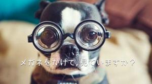 メガネをかけて見ていますか?