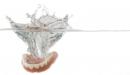 入れ歯にも使える抗菌スプレー